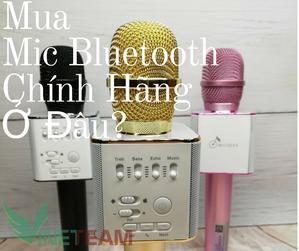 mua-mic-karaoke-chinh-hang-o-dau