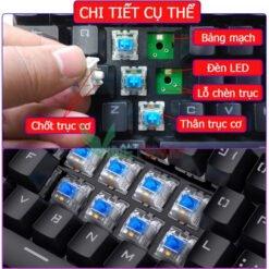 Bàn phím cơ DareU DK880 RGB Blue switch