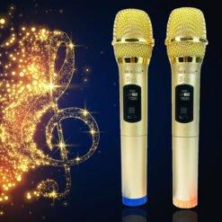 Bộ 2 micro không dây hát karaoke Vinetteam S30
