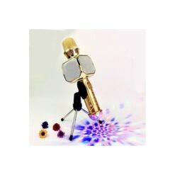 Micro karaoke SDRD SD-10